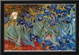 Vincent Van Gogh (Irises in Rich Earth) Art Poster Print Prints