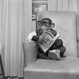 Clever Monkey Photographic Print by  Vecchio