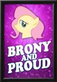 Brony and Proud Pony Poster Photo