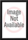 Tecmo Super Bo 8-bit Hall of Fame Posters