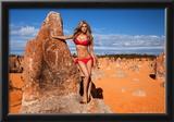 Sheridyn Fisher Leopard Bikini Prints