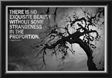 Beauty and Strangeness Edgar Allan Poe Poster Posters