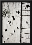 Bullet Holes in Budapest Hungary Prints