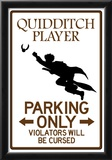 Quidditch Player Parking Sign Poster Print
