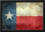 Texas State Flag Photo