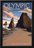 Kalaloch Beach - Olympic National Park, Washington Prints