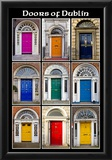 The Old Georgian Doors Of Dublin Photo