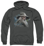 Hoodie: The Hobbit: An Unexpected Journey - Gandalf The Grey Pullover Hoodie