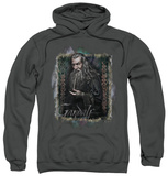 Hoodie: The Hobbit: An Unexpected Journey - Gandalf Pullover Hoodie