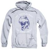 Hoodie: Jurassic Park - My Vision Shirts