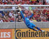 Jul 19, 2014 - MLS: Vancouver Whitecaps vs Real Salt Lake - David Ousted Photo by Chris Nicoll