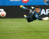 Aug 2, 2014 - MLS: Toronto FC vs Montreal Impact - Troy Perkins Photo by Jean-Yves Ahern