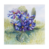 The Mauve Primrose 2000 Giclee Print by Joan Thewsey