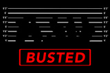 Busted 2 Wall Sign