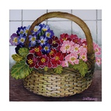 Red Mauve and Pink Primroses in a Basket, 2012 Giclee Print by Joan Thewsey