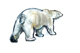 Glacier Mint (Polar Bear), 2013 Giclee Print by Mark Adlington