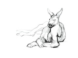 Resting Athlete (Red Kangaroo), 2012 Giclee Print by Mark Adlington