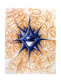 Blue Star Giclee Print by Kenny Scharf