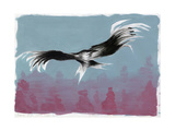 Canyon Eagle, 2014 Giclee Print by Nancy Moniz