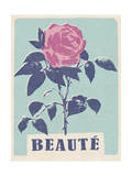 Beaute - Beautiful - Rose Print by  Junk Food