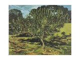 The Apple Tree, 1990 Giclee Print by Margaret Hartnett