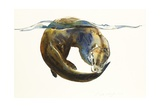 Circle of Life, 2014 Giclee Print by Mark Adlington