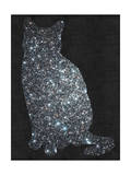 Cat - Stars - Night Sky - Design Affiche par  Junk Food