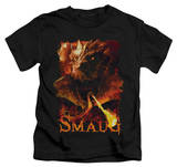 Youth: The Hobbit: The Battle of the Five Armies - Smolder Shirts