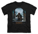 Youth: The Hobbit: The Battle of the Five Armies - Bilbo Poster T-Shirt