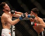 UFC 181 - Pettis v Hobar Photo by Josh Hedges/Zuffa LLC