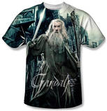 Youth: The Hobbit: The Battle of the Five Armies - Wizard Shirt
