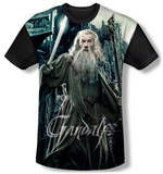 The Hobbit: The Battle of the Five Armies - Wizard(black back) T-shirts