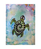 Green Seaturtle Photographic Print by Jill English
