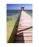 Belize Dock Photographic Print by Jill English