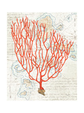 Textured Coral IV Prints by Avery Tillmon