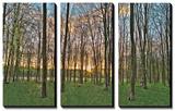 Secret Sunset Posters by Assaf Frank