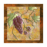 Pinot Noir Wine Grapes Posters by Megan Aroon Duncanson