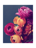 Deep Blooms Prints by Lupen Grainne