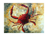 Coastal Luxe Crab Photographic Print by Megan Aroon Duncanson