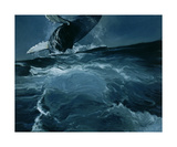 Humpback Whale Series I: IV Photographic Print by Heather Theurer