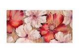 Barnwood Blossoms Premium Giclee Print by Jurgen Gottschlag