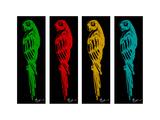 Colorful Parrot Bird Arte di Megan Aroon Duncanson