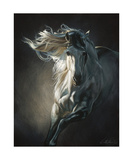By Moonlight Photographic Print by Heather Theurer