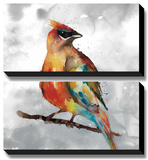 Cardinal Prints by Stephane Fontaine