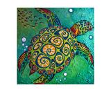 Sea Turtle Fotografisk tryk af Jill English
