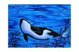 Orca Killer Whale Underwater Photographic Print by Megan Aroon Duncanson