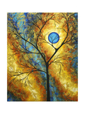 Sheer Magic II Photographic Print by Megan Aroon Duncanson