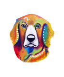 Lola the Golden Retriever Photographic Print by Jill English