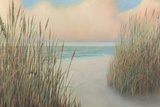 Beach Trail I Prints by James Wiens