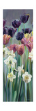 Grape Tulips Panel II Posters by Marilyn Hageman